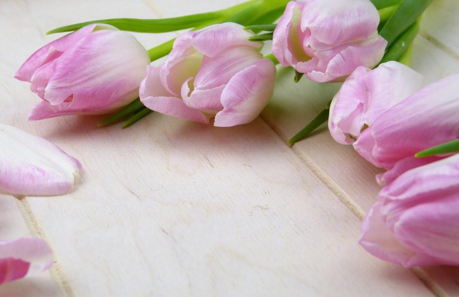 Dzien Mamy Jakie Kwiaty Wybrac