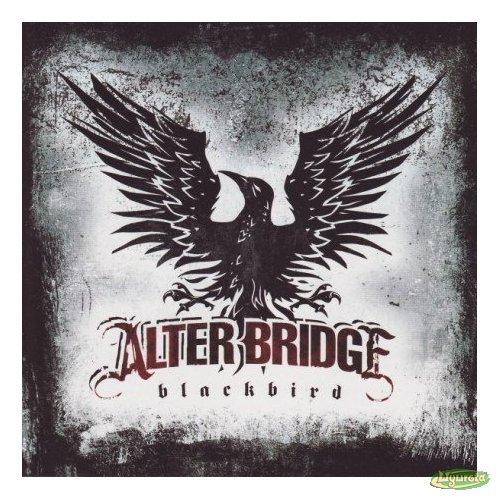 Alter Bridge - teksty piosenek